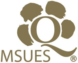 logo msues 15