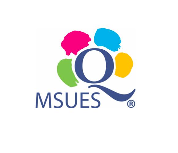 Zostaliśmy wyróżnieni znakiem jakości MSUES